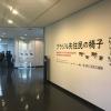 <b>Foto 6 da notícia:</b><br>Veja fotos da exposição no Museu de Arte Moderna de Saitama, Japão