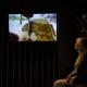 <b>Foto 7 da notícia:</b><br>Fotos da exposição no Museu de Arte Indígena de Curitiba